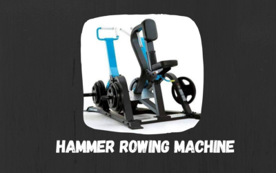 Hammer Rowing Machine Price, Types, Manufactuers in India