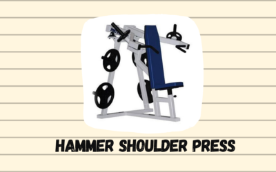 Hammer Shoulder Press Price, Types, Manufactures in India
