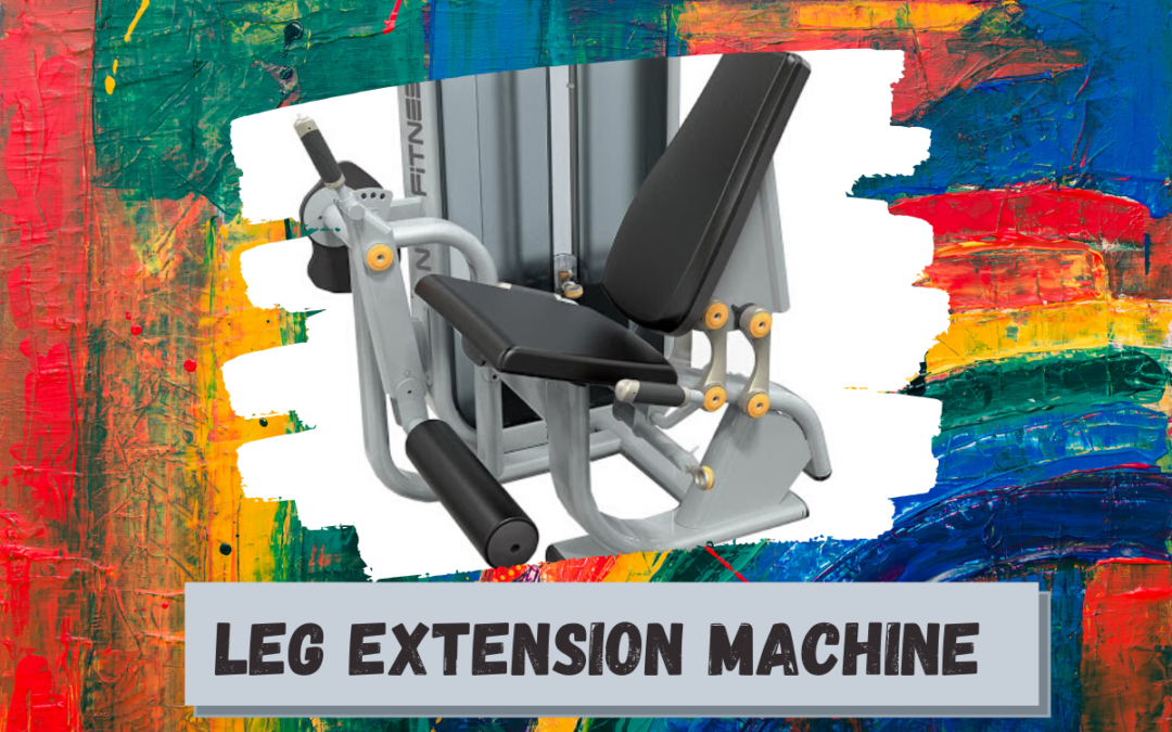Leg Extension Machine Price, Benefits, Alternatives, Manufacturers in India