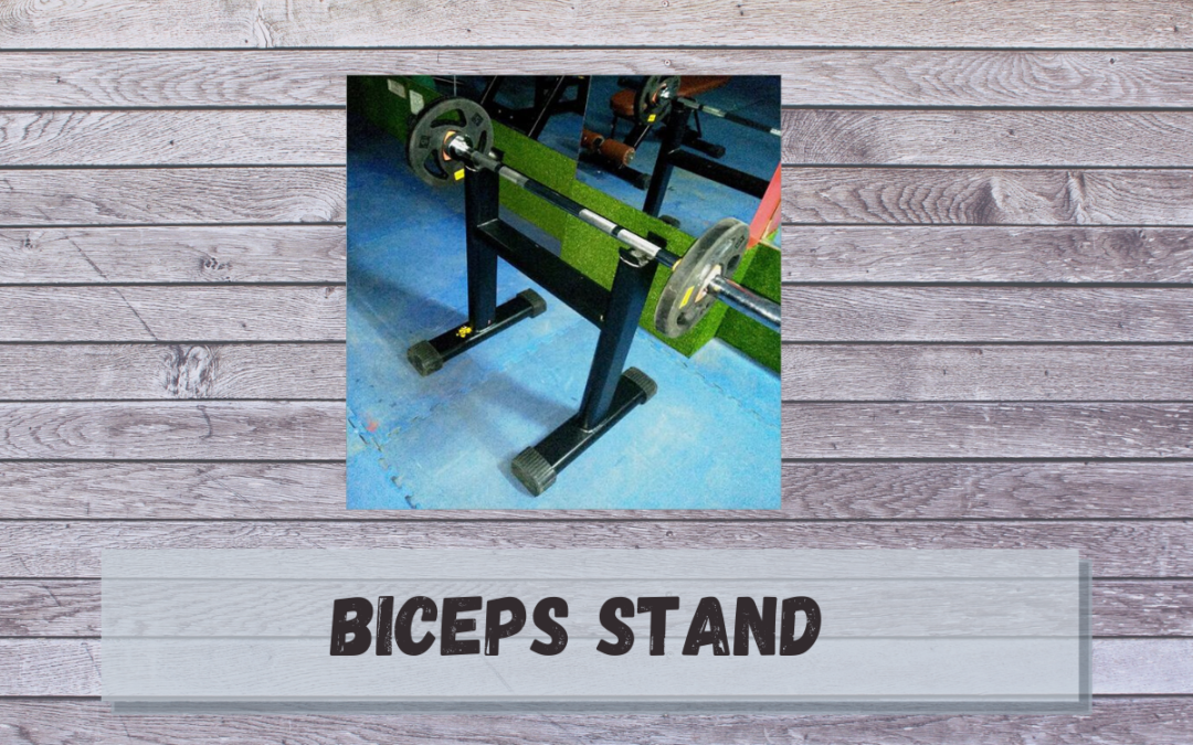 Biceps StandPrice, Benefits, Uses & Manufacturers in India