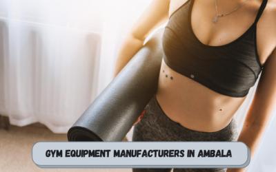 Best Gym Equipment Manufacturers in Ambala